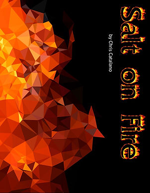 Salt-on-fire book cover.jpg