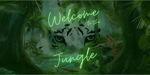 Welcome to the Jungle Show Photos Package
