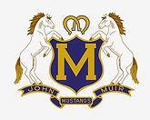 mustangs logo-web.jpg