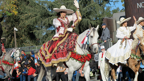 Rose-parade-costume2.png