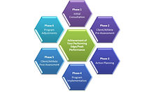 LSP Coaching Diagram.jpg