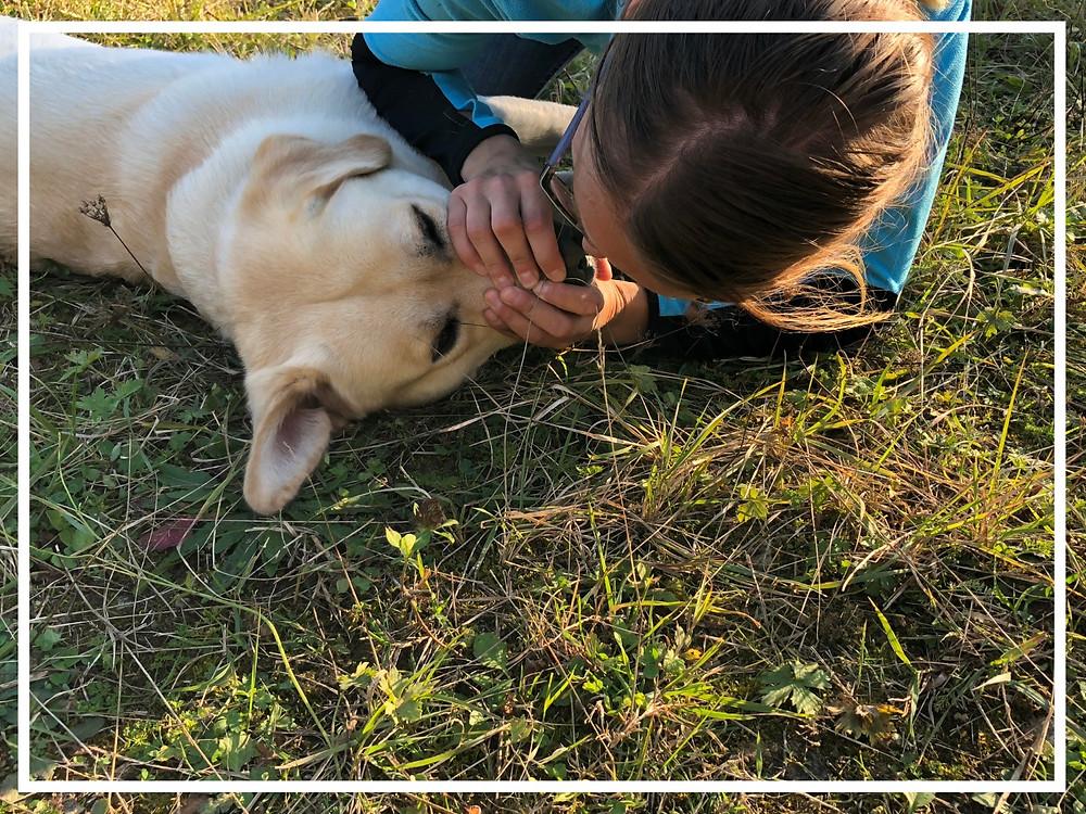 Mund-zu-Nase Beatmung am Hund