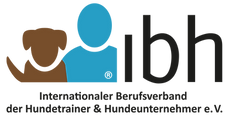 logo-ibh-transparent.png