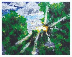 Light_Tree_Thumb