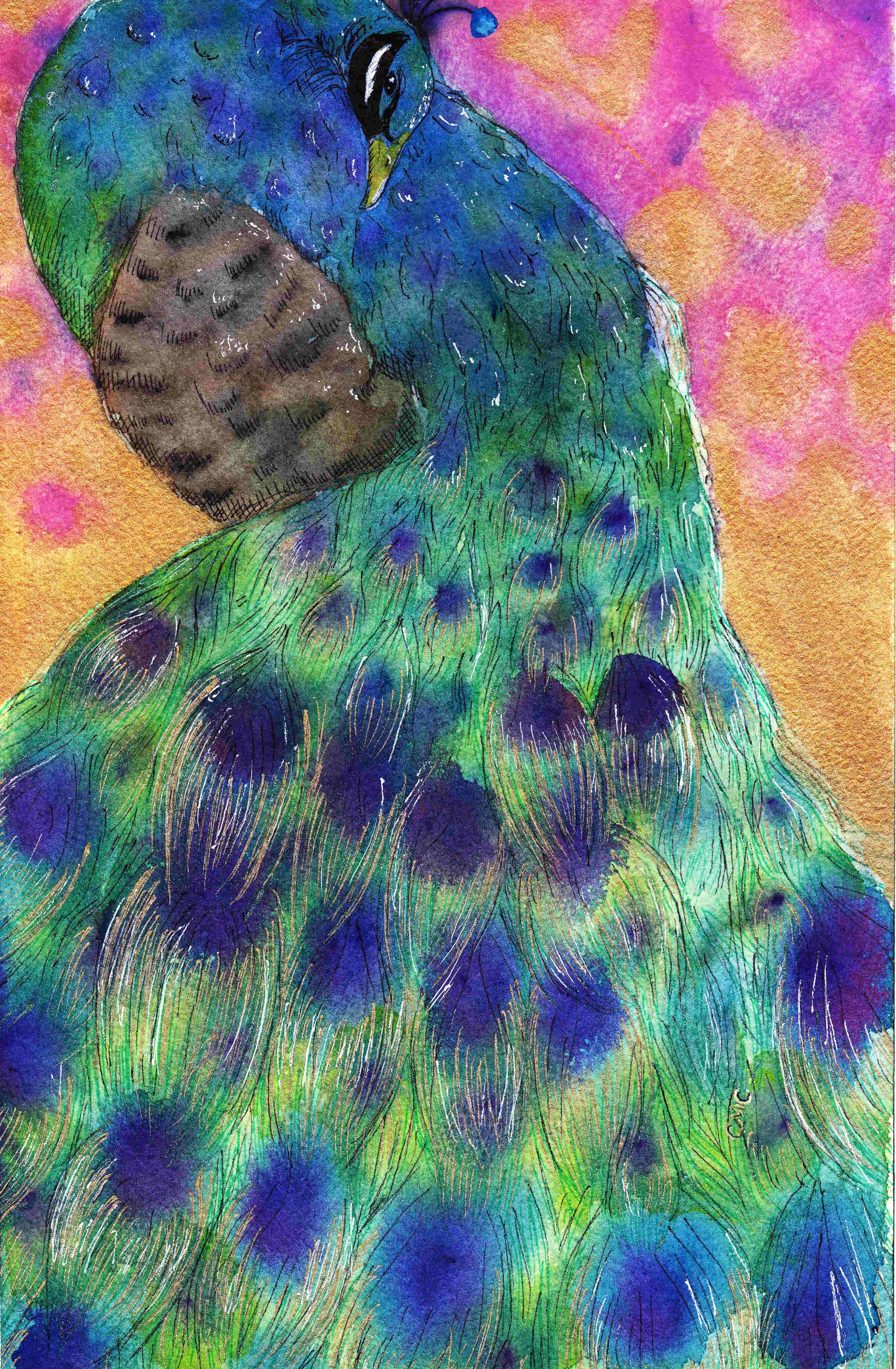 peacock_thumb