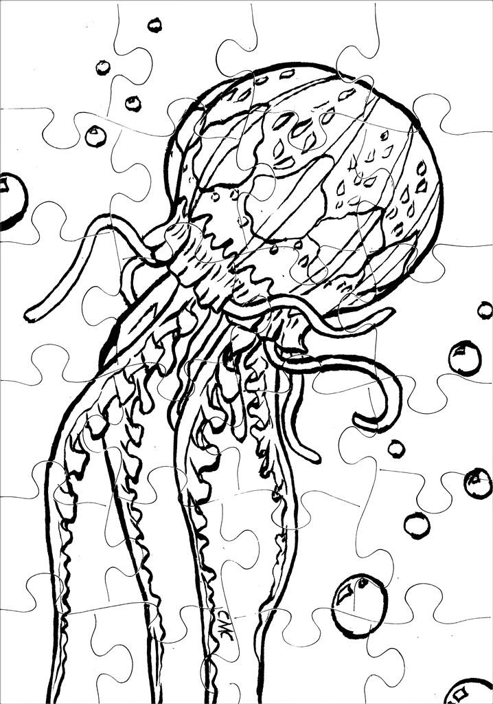 Jellyfish_colormepuzzle