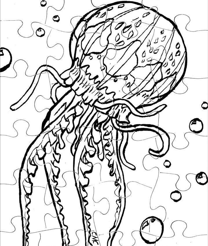 JellyFish_Puzzle