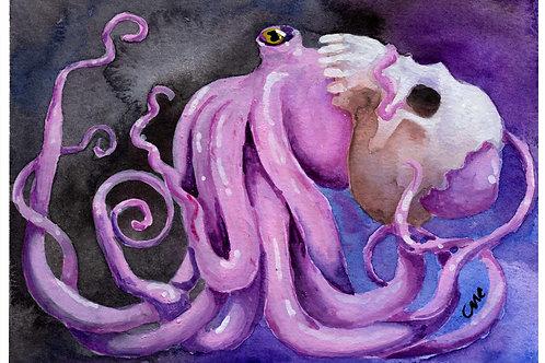 Octopus' Helmet - Prints