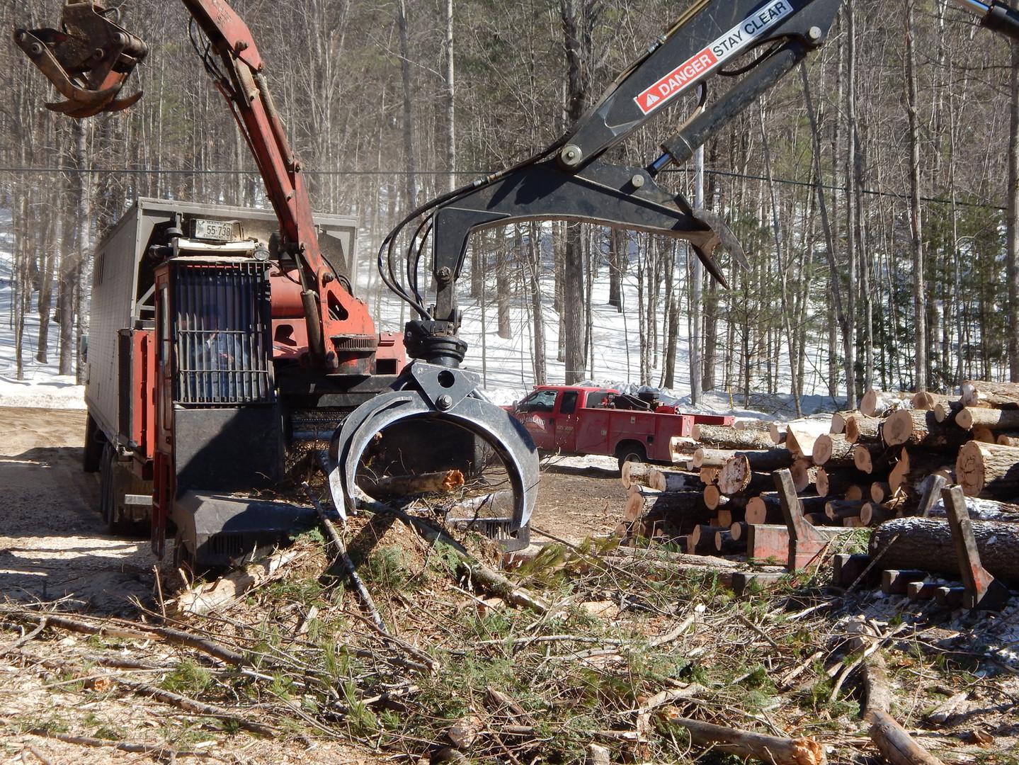 Cornish Maine logging
