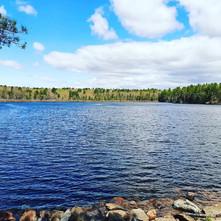 Deering Pond by Sara Stanley