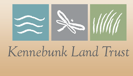 Kennebunk Land Trust Executive Dir. Sarah Stanley