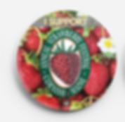 Strawberry Festival Button