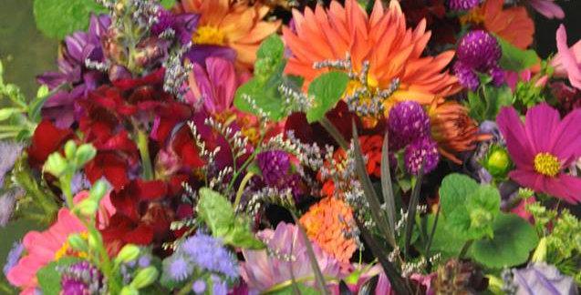 Summer Flower CSA