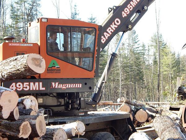 highland logging 006.JPG