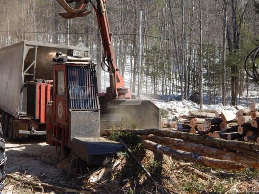 highland logging 079.JPG