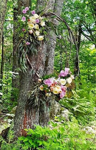 woodland.jpg?format=1000w.jpg