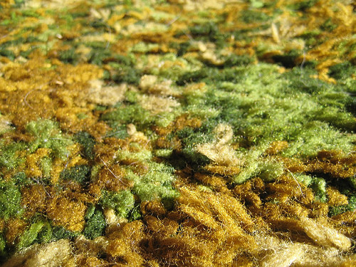 By bradleyolin from Santa Cruz, USA - Cabin Carpet, CC BY 2.0