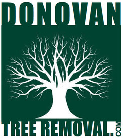 CornishTreeRemoval