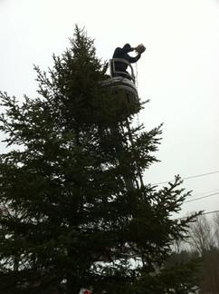 Christmas-In-Cornish-2011-06.jpg