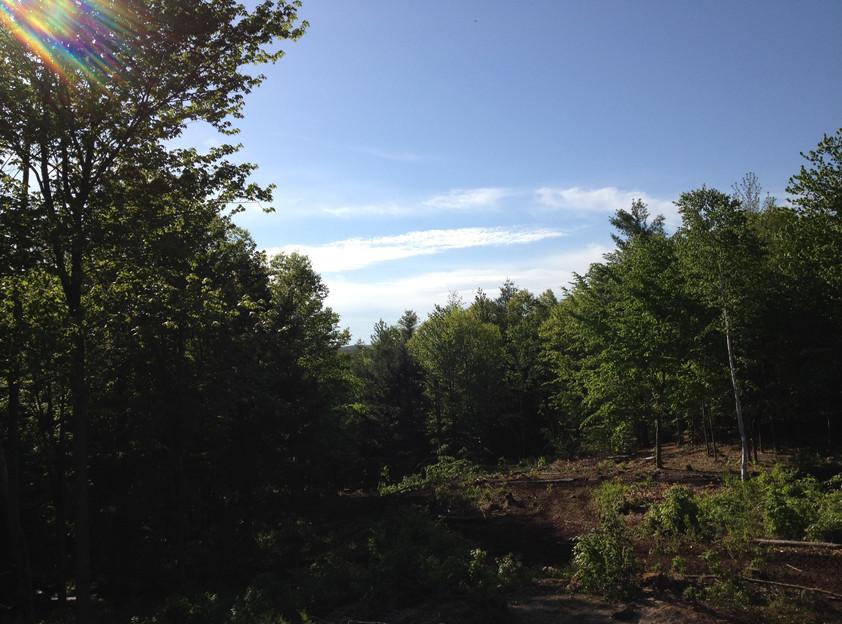 vista4.jpg