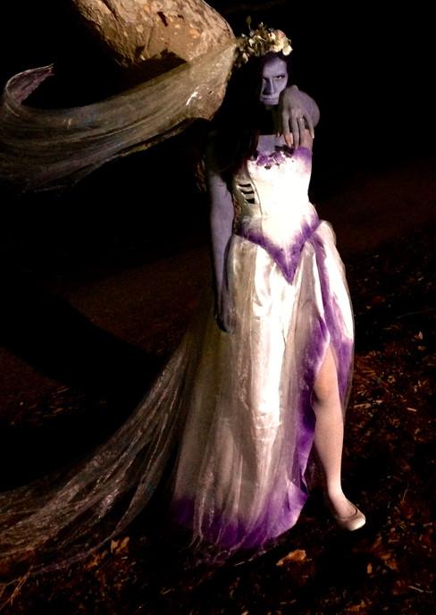 Corpse Bride   2014