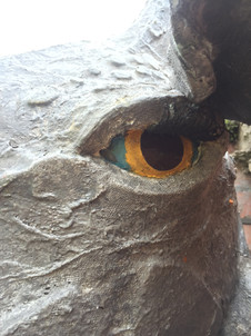 Closeof the eye