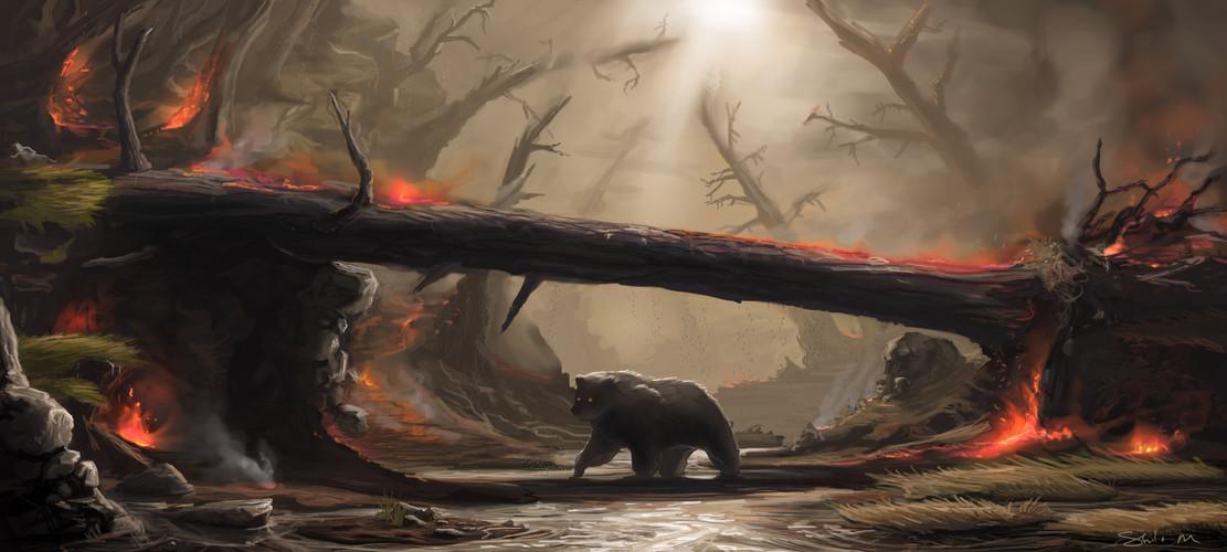 bearFIXED.jpg