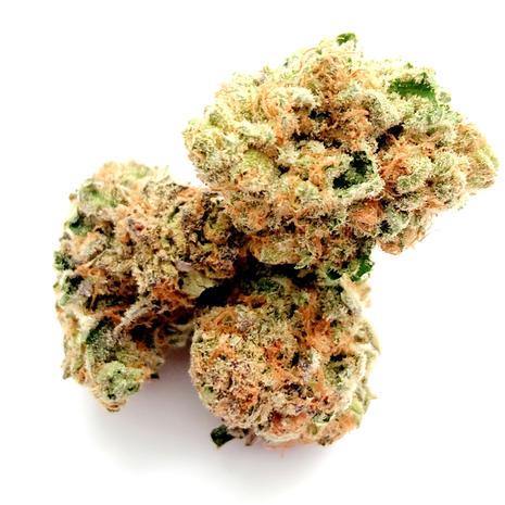 3A-Mimosa-Sativa-24%THC