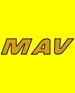 MAV Glass Logo 360x445.jpg