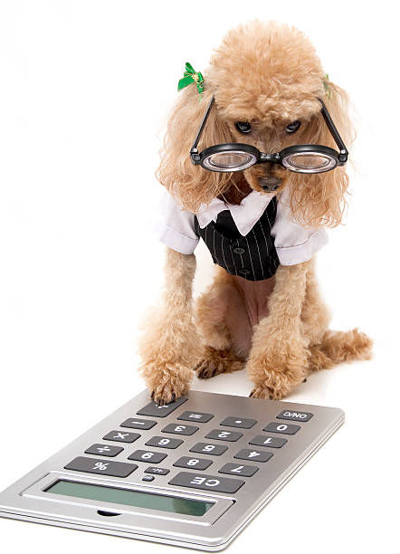 Bookkeeping Services (Hourly Rate)