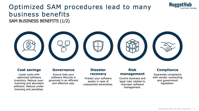 Software Asset Management (SAM) | NuggetHub