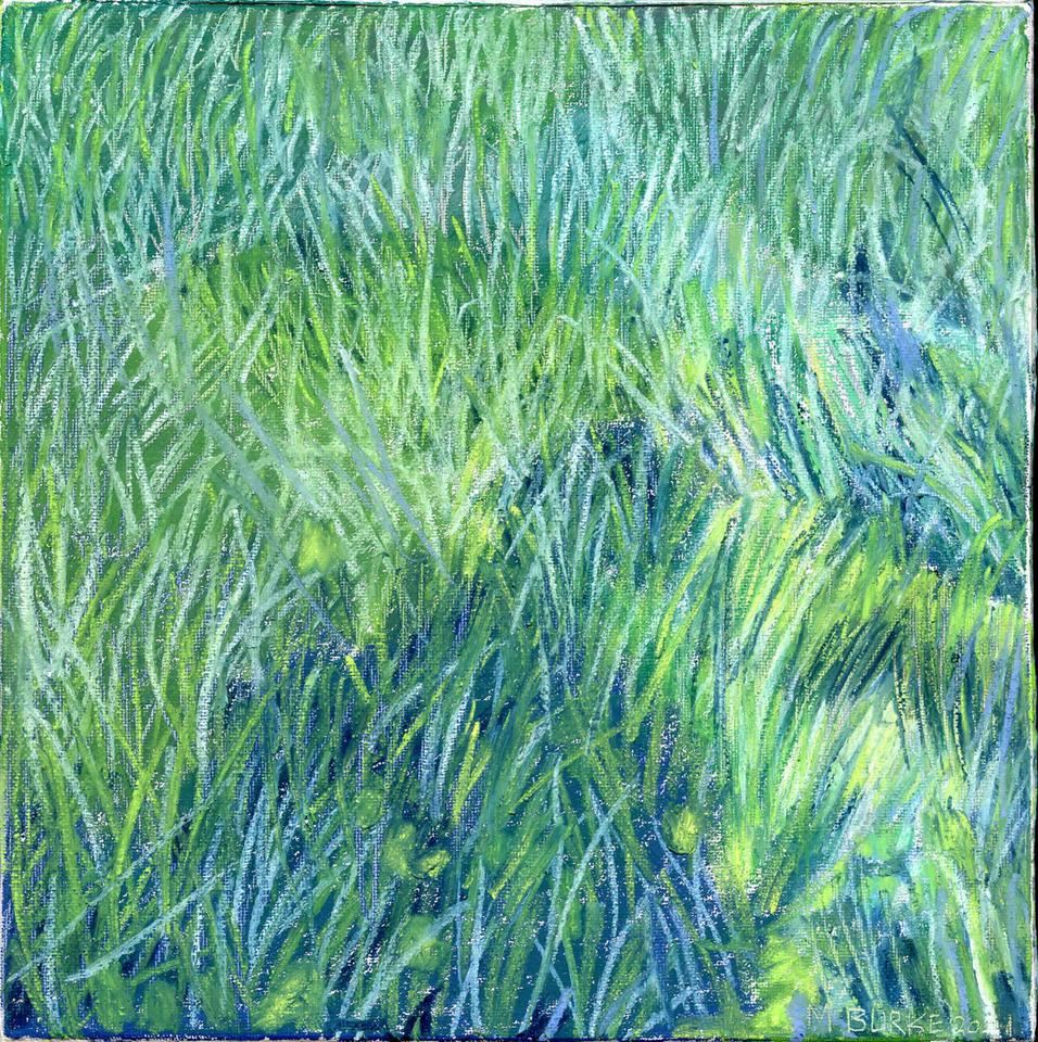 John's Blue Grass