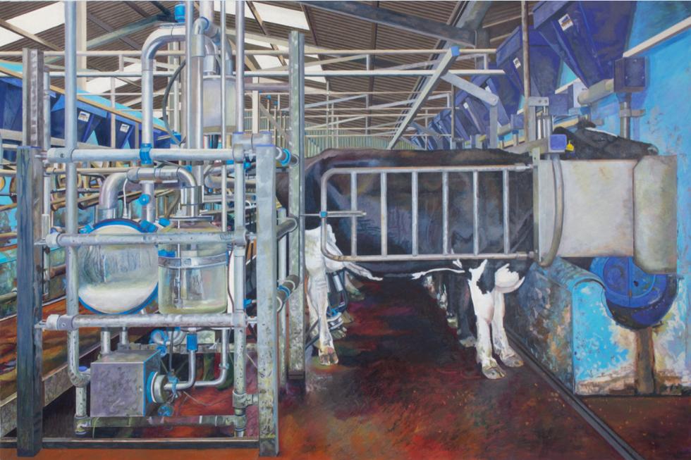 Milking at Knockainey