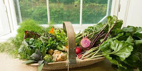 fresh_food_basket.jpg