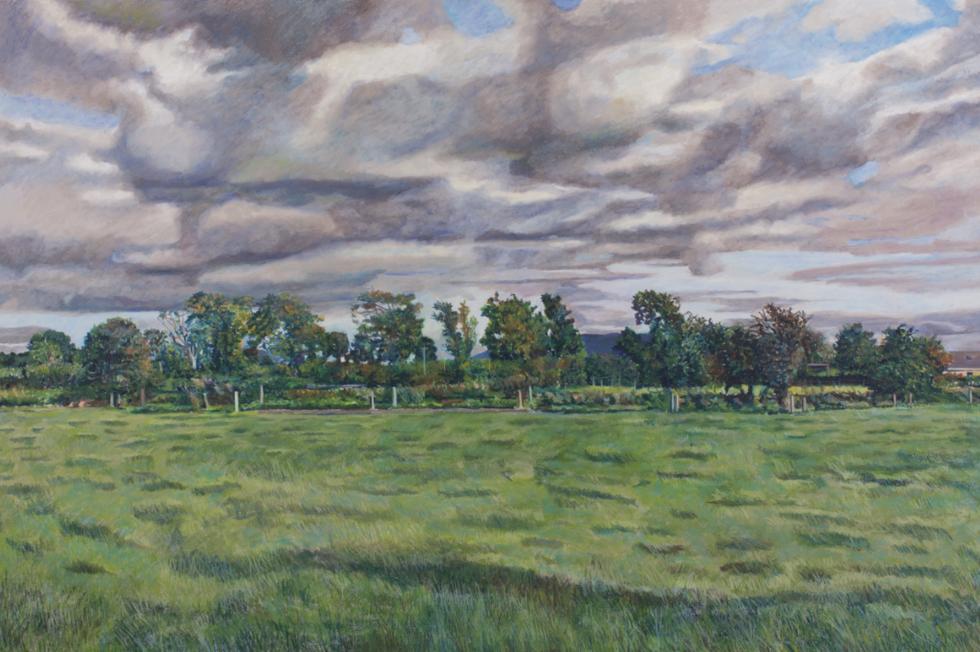 John Macnamara's Grass