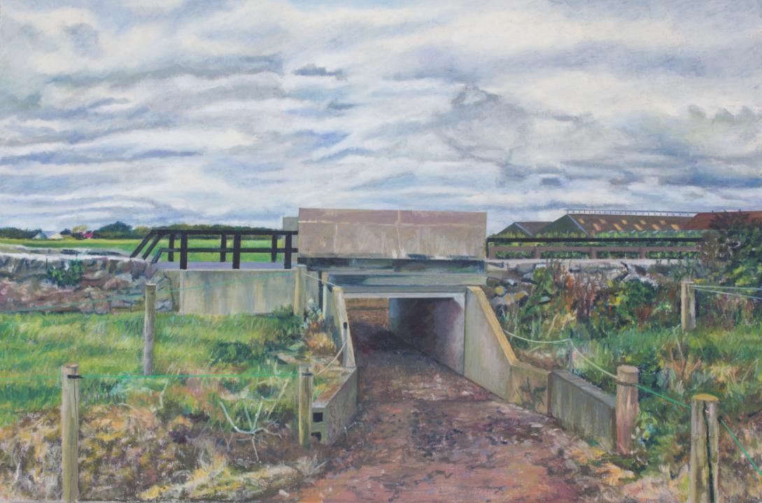 Mcnamara's Tunnel
