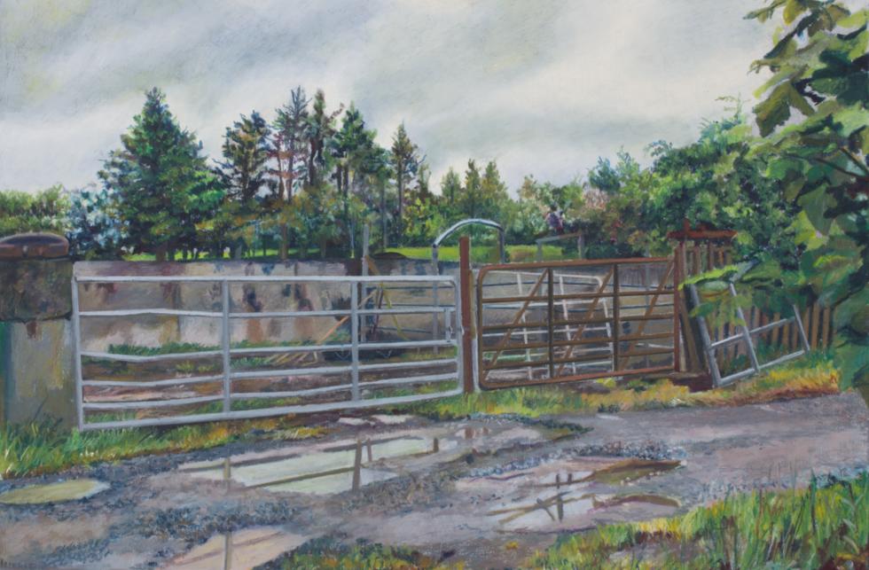 Gates on the Murphy Farm