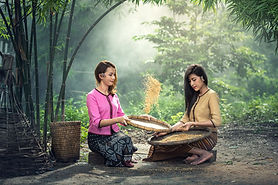 Lao-rice-1807547_1920.jpg