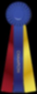 winner- bow-multi-color-ribbon-4249302.p