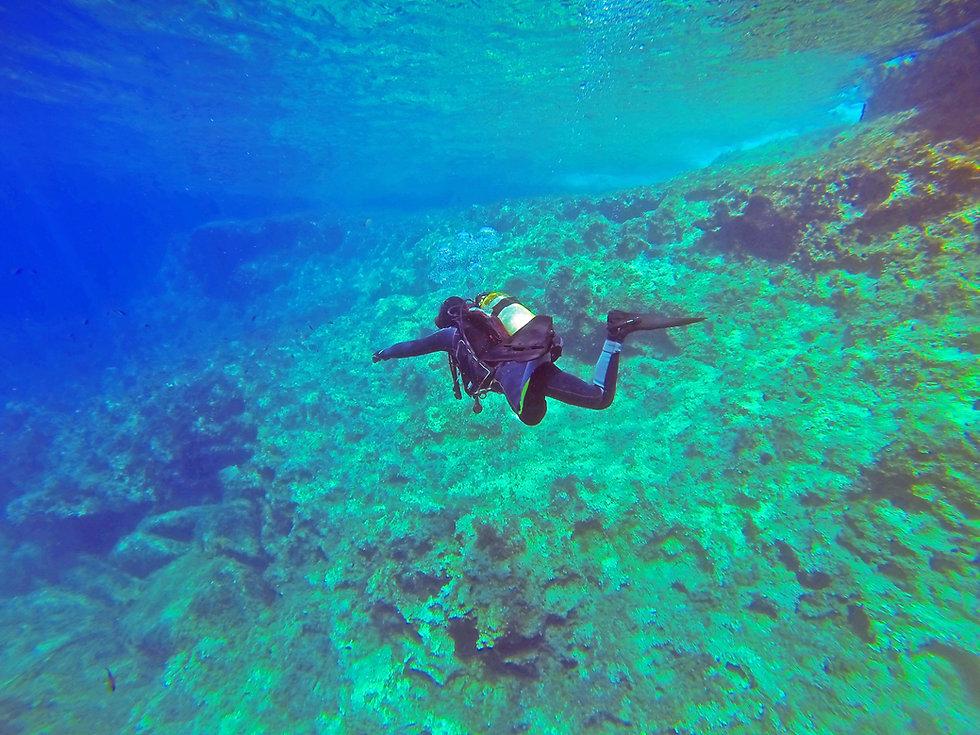 Canva - Scuba Diver in the Sea (1).jpg