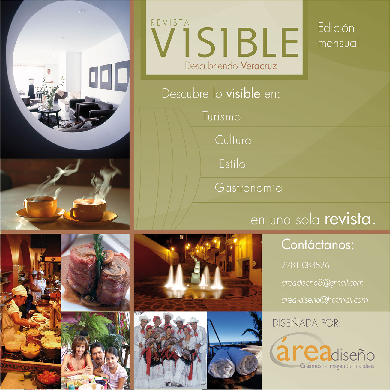 Brochure, Visible Magazine