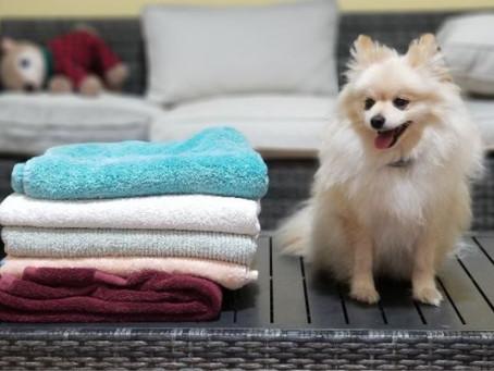 Got Towel?