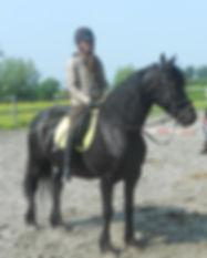 Ooievaarsnest_vakantieboederij_paardenpe
