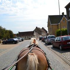 paard en koets DSC_0293.JPG
