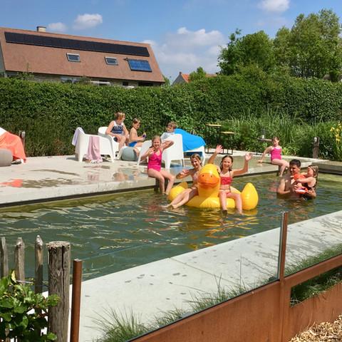 Hof ter Lo zwembad