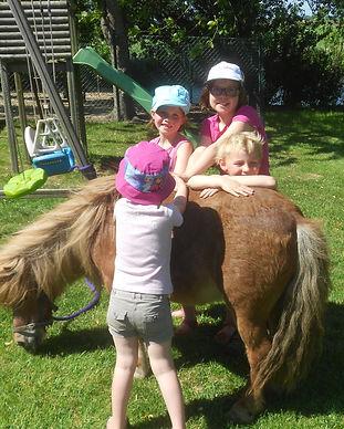 Ooievaarsnest_vakantieboederij_paarden12