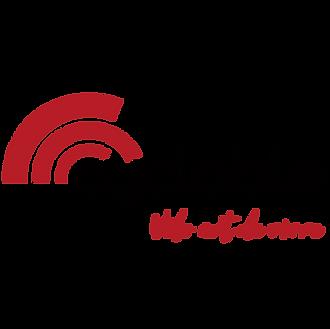 logo cyclable velo art de vivre_insta-01