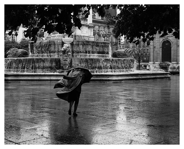 Rainy Afternoon; Paris