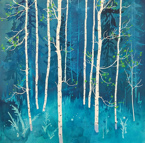 Aspen at the Edge of the Spruces 3