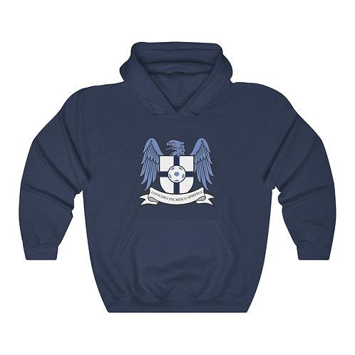 Blue Series - Unisex Heavy Blend™ Hooded Sweatshirt